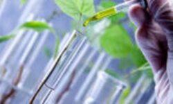Du học ngành công nghệ sinh học – Bước đi giúp phát triển nước nhà!