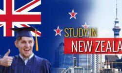 """Du học ngành sư phạm tại New Zealand có gì """"hot"""" ?"""