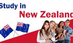 Tìm hiểu chi tiết về hệ thống giáo dục ở New Zealand