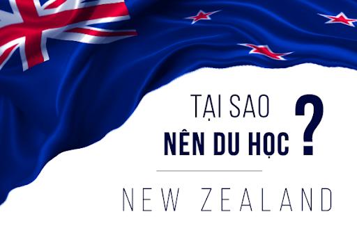 Những lý do nên du học New Zealand ngành sư phạm