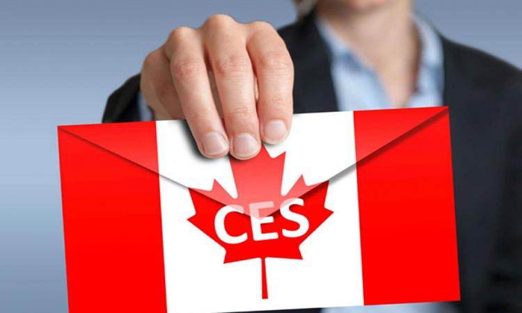 Những Điều kiện cần có khi đăng ký chương trình CES